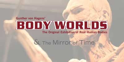 Body Worlds – Promotional Video